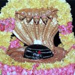 Mallikarjuna Srisailam
