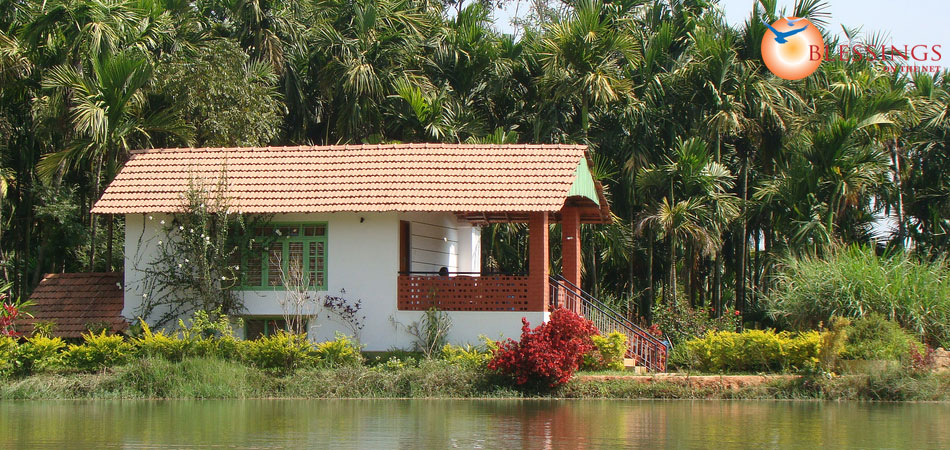 Tranquil Lake Homestay
