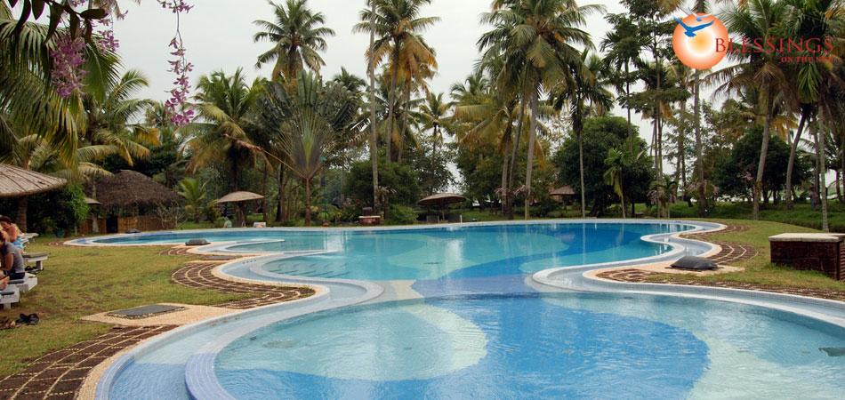 Coconut Lagoon Contact