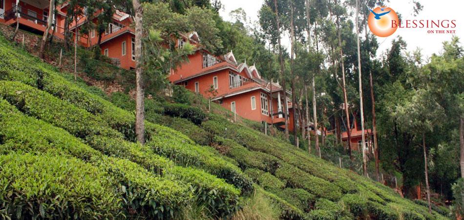 Tea valley resort for Castle haven cabins