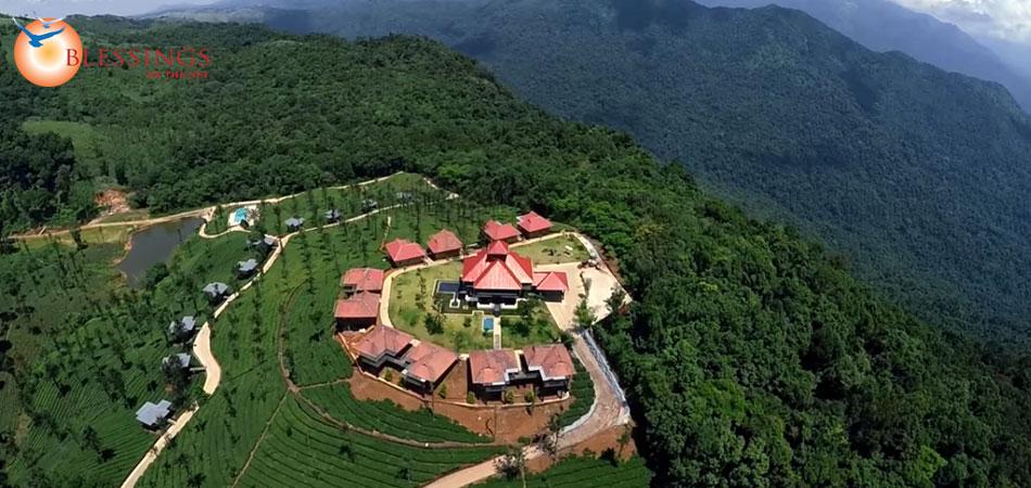 Wild planet jungle resort - Plante jungle ...