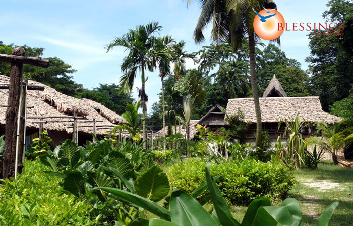 Wild Orchid Resort