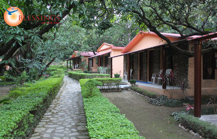 Krishna Wilderness Retreat, Corbett