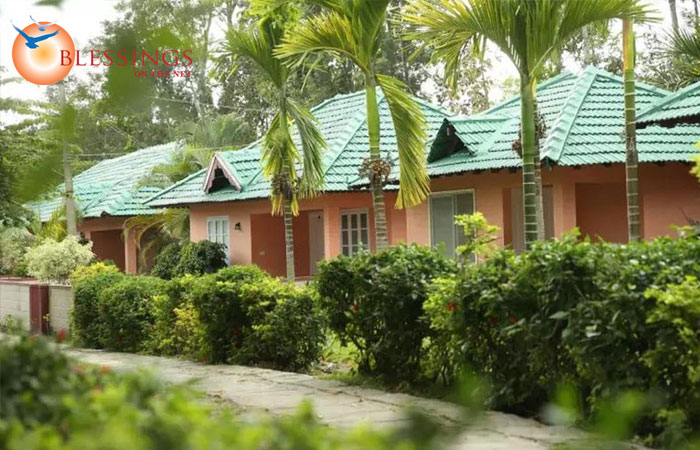 Palm Era Cottages, Coorg