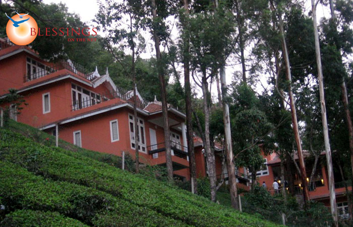 Tea Valley Resort