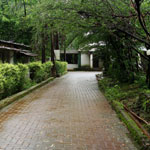 Durshet Forest Lodge