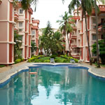 Adamo The Bellus