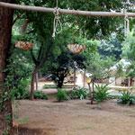 Ranthambhore Bagh