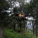 Rainforest Resort Athirapaly