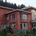 Hotel Sonamarg Glacier