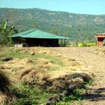 Balaji Farm