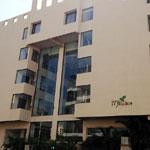 Hotel Mint  Ivy Studio