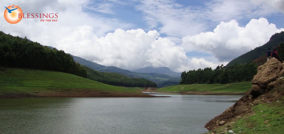 Tour Best of Munnar 3 Night 4 Days from Cochin
