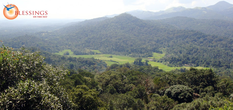 Hill Station Tour Coorg