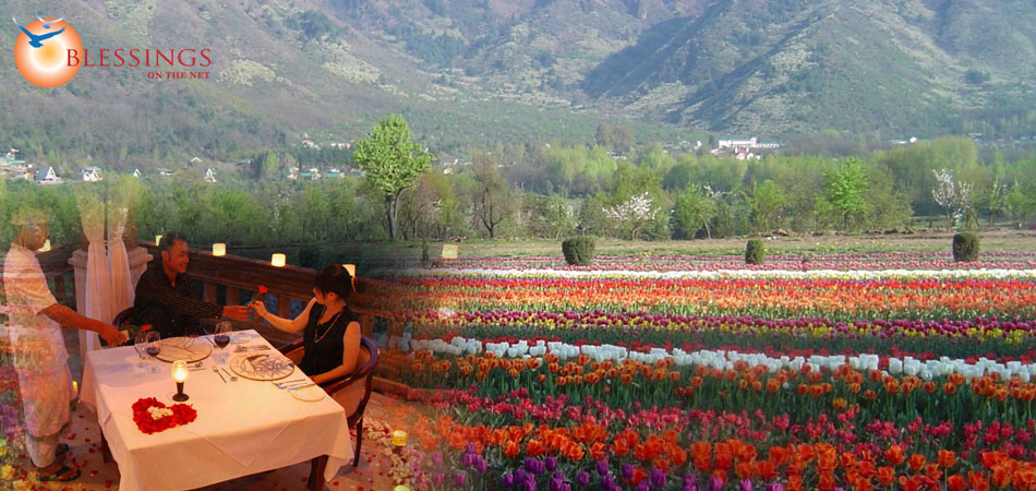 Glimpses Of Kashmir and Ladakh 10 Nights and 11 Days