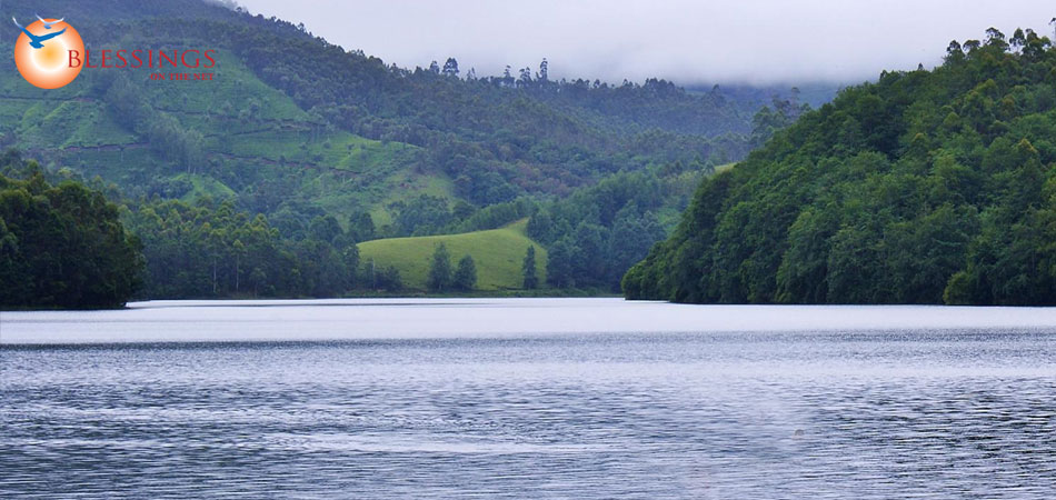 Tour Cochin Munnar Thekkady Alleppy Kovalam 7 Nights  8 Days