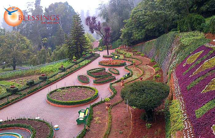 Honeymoon tours india for Honeymoon packages for ooty