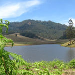 Hill Station tour Kodaikanal- Munnar- Thekkady 7 Night 8 Days