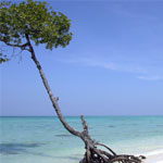 Andaman – Havelock - Neil Island Honeymoon