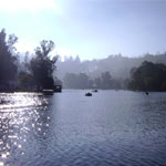 Kodaikanal with Munnar Thekkady Honeymoon