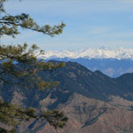 Exotic Shimla Manali 5 Night 6 Days