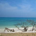 Honey Moon Tour Andaman Package Tour 3 Night 4 Days Package