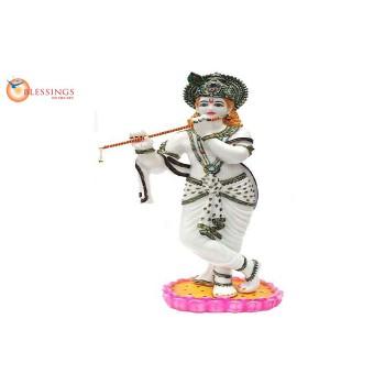 Krishna 30460